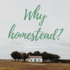 Why Homestead?