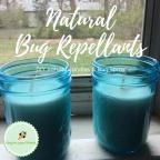 Natural Bug Repellants