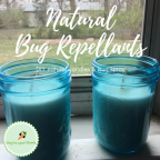 Natural Bug Repellants